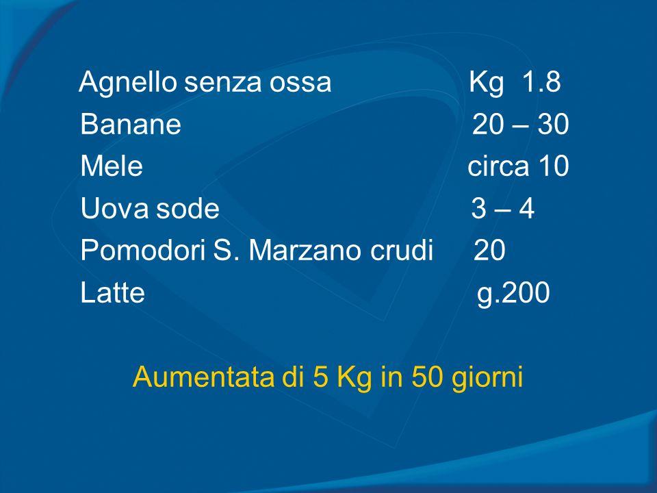 Agnello senza ossa Kg 1.8 Banane 20 – 30 Mele circa 10 Uova sode 3 – 4 Pomodori S. Marzano crudi 20 Latte g.200 Aumentata di 5 Kg in 50 giorni