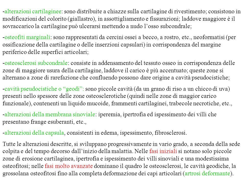 SQUILIBRI STATICO-DINAMICI (obesità, gravidanza, scoliosi, ecc.)