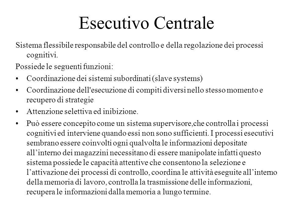 Esecutivo Centrale Sistema flessibile responsabile del controllo e della regolazione dei processi cognitivi. Possiede le seguenti funzioni: Coordinazi