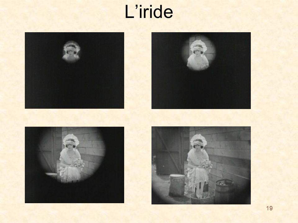 Liride 19