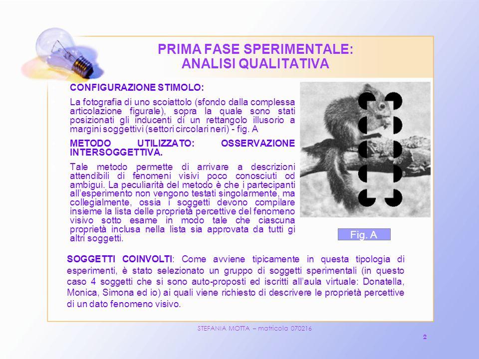 STEFANIA MOTTA – matricola 070216 2 PRIMA FASE SPERIMENTALE: ANALISI QUALITATIVA CONFIGURAZIONE STIMOLO: La fotografia di uno scoiattolo (sfondo dalla complessa articolazione figurale), sopra la quale sono stati posizionati gli inducenti di un rettangolo illusorio a margini soggettivi (settori circolari neri) - fig.