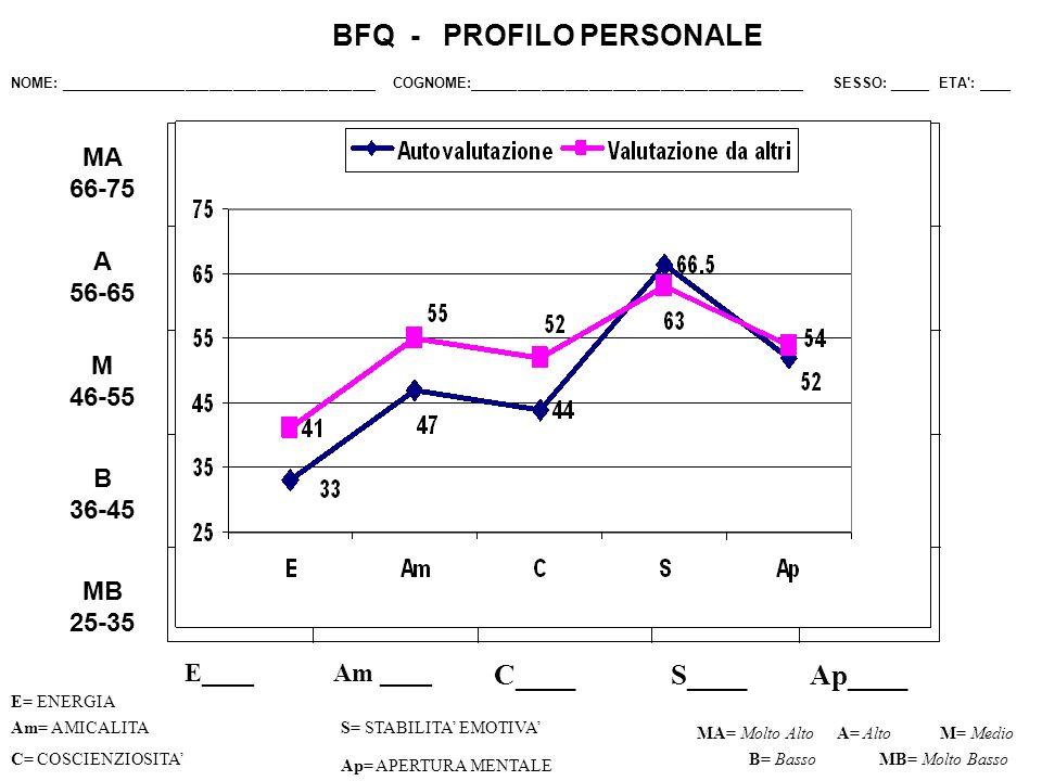E____ C____S____Ap____ Am= AMICALITAS= STABILITA EMOTIVA C= COSCIENZIOSITA Ap= APERTURA MENTALE MA= Molto AltoM= Medio B= Basso BFQ - PROFILO PERSONAL