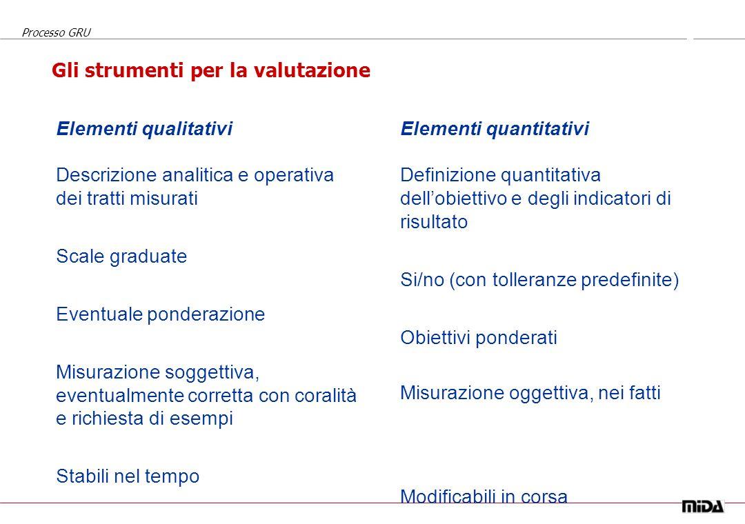 Processo GRU Struttura organizzativa Obiettivi aziendali per lanno Finalità e responsabilità della posizione (perché esiste?) Indicatori di risultato