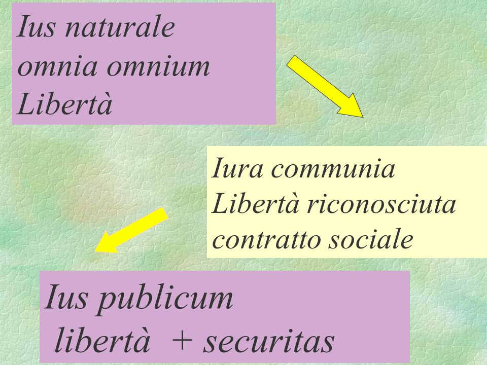 Ius naturale omnia omnium Libertà Iura communia Libertà riconosciuta contratto sociale Ius publicum libertà + securitas