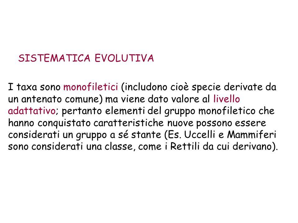 SISTEMATICA EVOLUTIVA I taxa sono monofiletici (includono cioè specie derivate da un antenato comune) ma viene dato valore al livello adattativo; pert