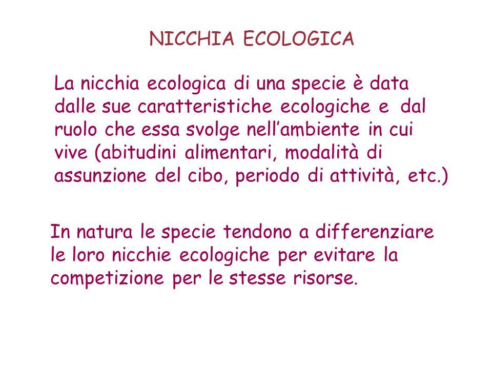 La nicchia ecologica di una specie è data dalle sue caratteristiche ecologiche e dal ruolo che essa svolge nellambiente in cui vive (abitudini aliment