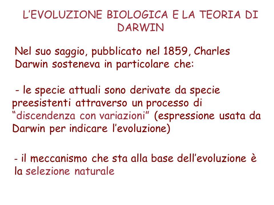 Il sistema di classificazione e di nomenclatura della biodiversità utilizzato attualmente è quello messo a punto da Linneo nel 1758 nel suo Systema Naturae I punti cardine di questo sistema sono: la nomenclatura binomia delle specie e la classificazione gerarchica SISTEMI E METODI DI CLASSIFICAZIONE