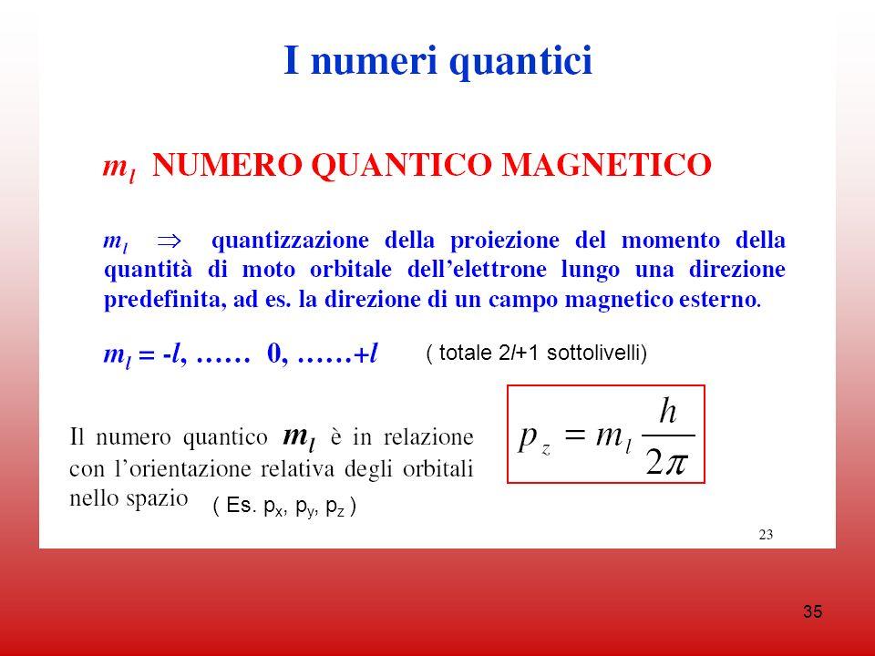 35 ( Es. p x, p y, p z ) ( totale 2l+1 sottolivelli)