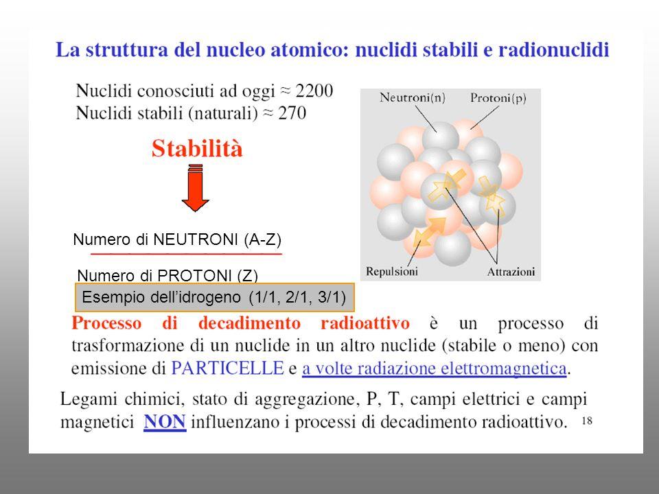 Numero di NEUTRONI (A-Z) Numero di PROTONI (Z) Esempio dellidrogeno (1/1, 2/1, 3/1)