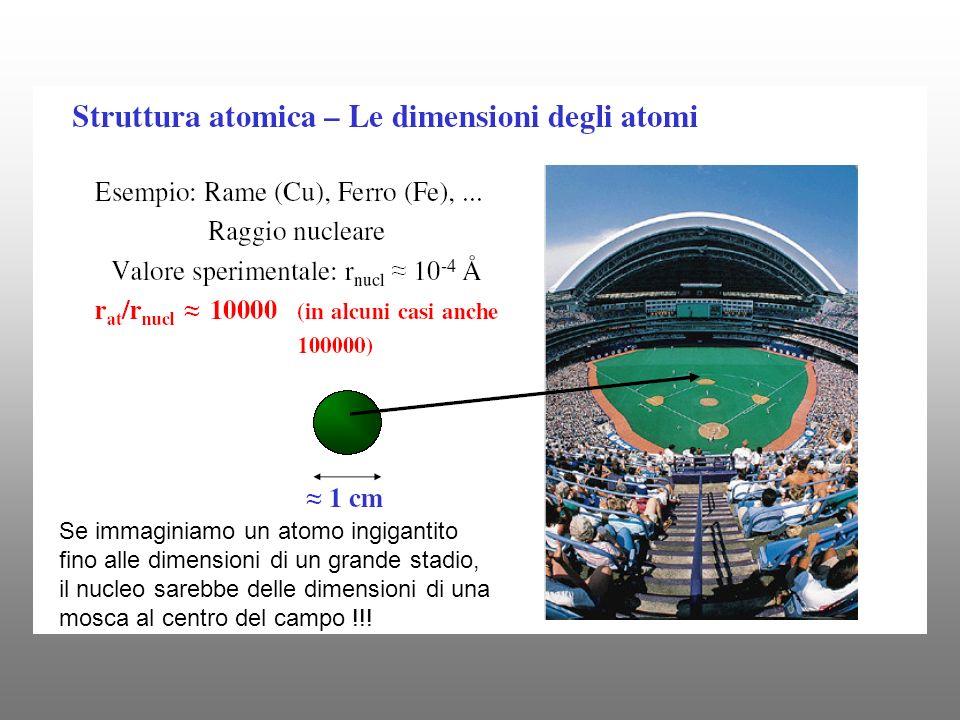 Se immaginiamo un atomo ingigantito fino alle dimensioni di un grande stadio, il nucleo sarebbe delle dimensioni di una mosca al centro del campo !!!