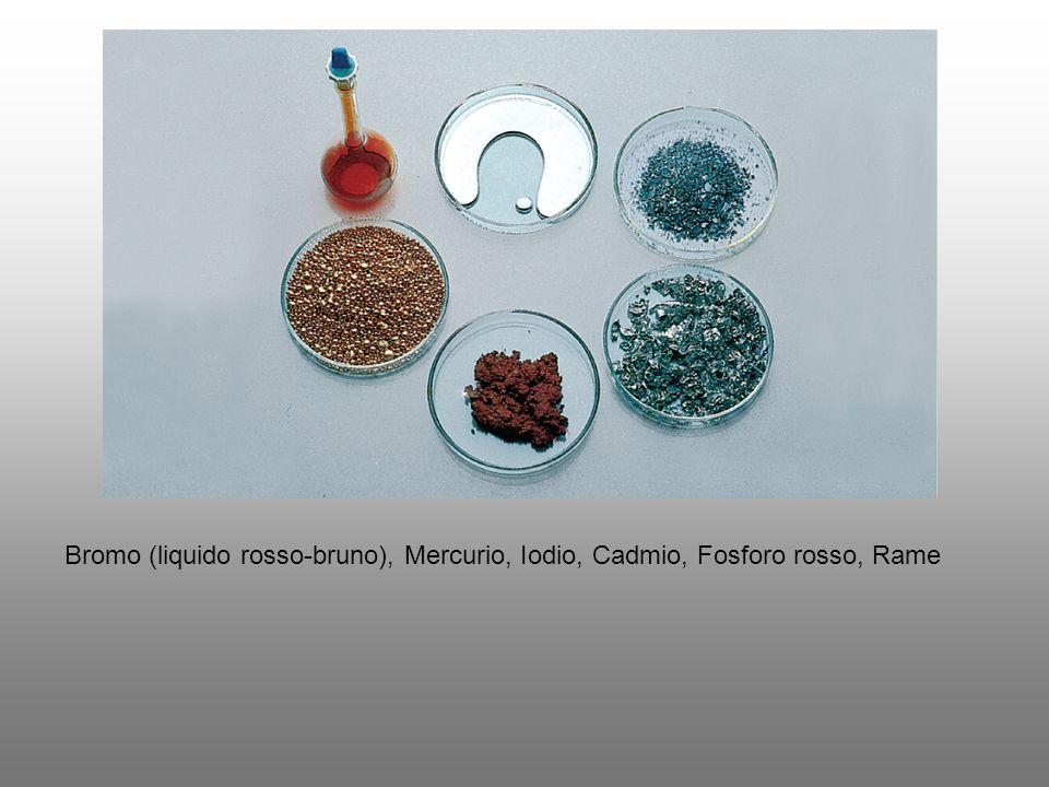 Gli elementi possono presentarsi in diverse forme: sotto forma monoatomica: i gas nobili (He, Ne, Ar, Kr, Xe, Rn) sotto forma molecolare: alcuni esempi sono H 2, N 2, O 2, O 3, F 2, P 4, S 8, Cl 2, Br 2, I 2 sotto forma di insieme continuo (cristallino o amorfo) di atomi legati in modo covalente: per esempio C, Si, B, Sb sotto forma metallica: la maggior parte degli elementi sono metalli, alcuni esempi sono il Ferro (Fe), il Sodio (Na), l oro (Au), il Calcio (Ca), l uranio (U).