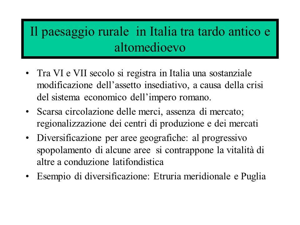 Il paesaggio rurale in Italia tra tardo antico e altomedioevo Tra VI e VII secolo si registra in Italia una sostanziale modificazione dellassetto insediativo, a causa della crisi del sistema economico dellimpero romano.