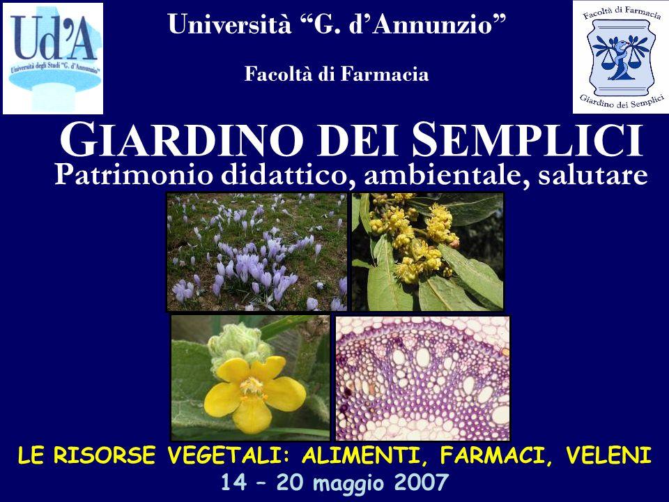 Università G. dAnnunzio Facoltà di Farmacia G IARDINO DEI S EMPLICI Patrimonio didattico, ambientale, salutare LE RISORSE VEGETALI: ALIMENTI, FARMACI,