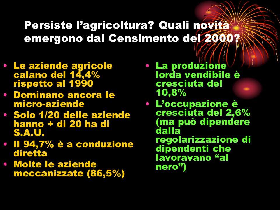 Persiste lagricoltura? Quali novità emergono dal Censimento del 2000? Le aziende agricole calano del 14,4% rispetto al 1990 Dominano ancora le micro-a
