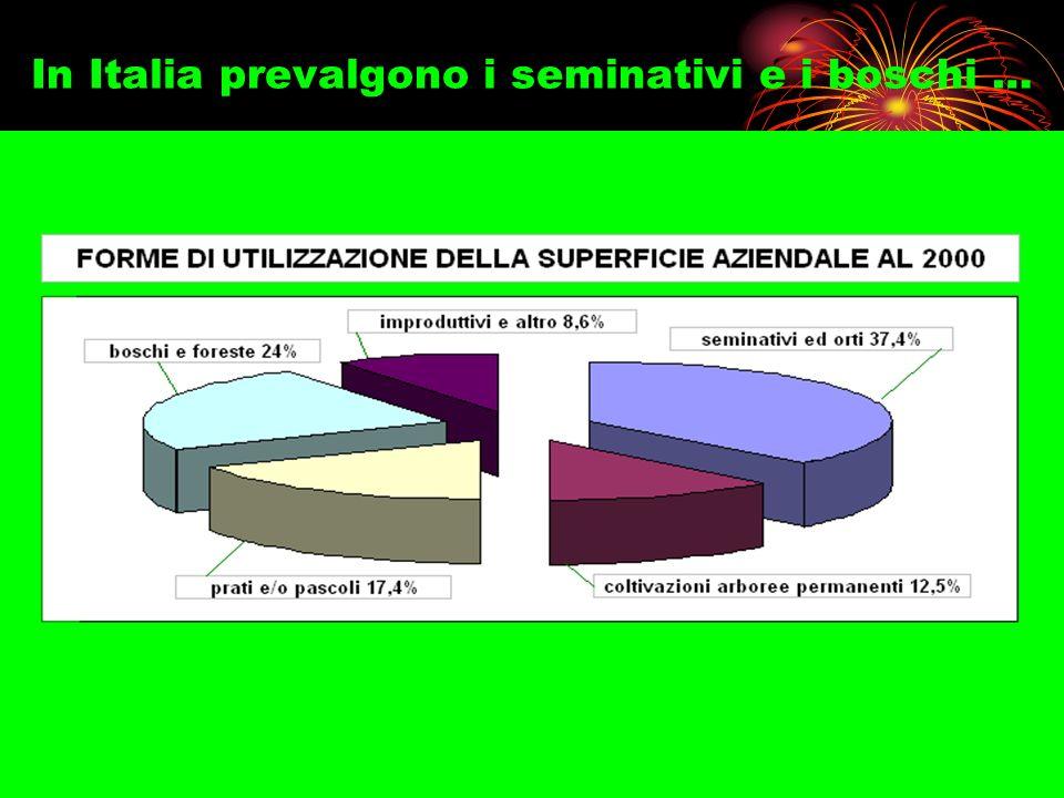 In Italia prevalgono i seminativi e i boschi …