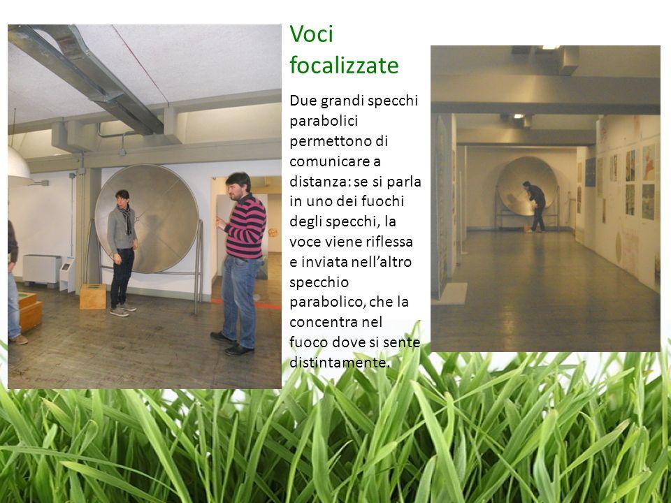 Voci focalizzate Due grandi specchi parabolici permettono di comunicare a distanza: se si parla in uno dei fuochi degli specchi, la voce viene rifless