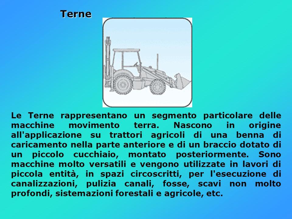 Terne Terne Le Terne rappresentano un segmento particolare delle macchine movimento terra. Nascono in origine all'applicazione su trattori agricoli di