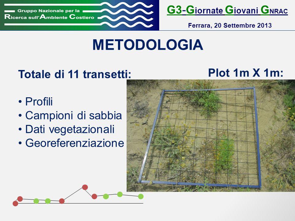 G3-G iornate G iovani G NRAC Ferrara, 20 Settembre 2013 METODOLOGIA Totale di 11 transetti: Profili Campioni di sabbia Dati vegetazionali Georeferenziazione Plot 1m X 1m: Cambiamento significativo della morfologia (battigia, berma, backshore, piede anteduna, cresta duna e piede retroduna) Cambiamento significativo della vegetazione