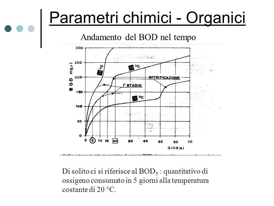 Parametri chimici - Organici Andamento del BOD nel tempo Di solito ci si riferisce al BOD 5 : quantitativo di ossigeno consumato in 5 giorni alla temp
