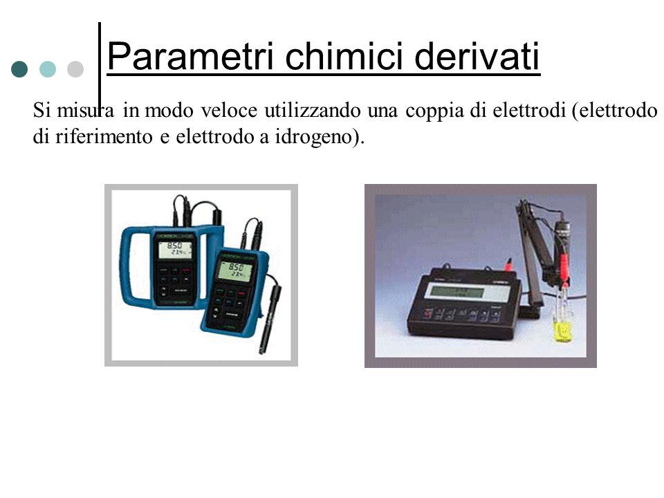 Parametri chimici derivati Si misura in modo veloce utilizzando una coppia di elettrodi (elettrodo di riferimento e elettrodo a idrogeno).
