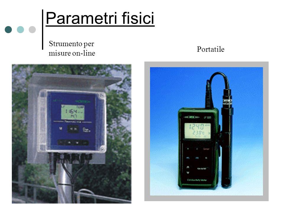 Parametri fisici Portatile Strumento per misure on-line