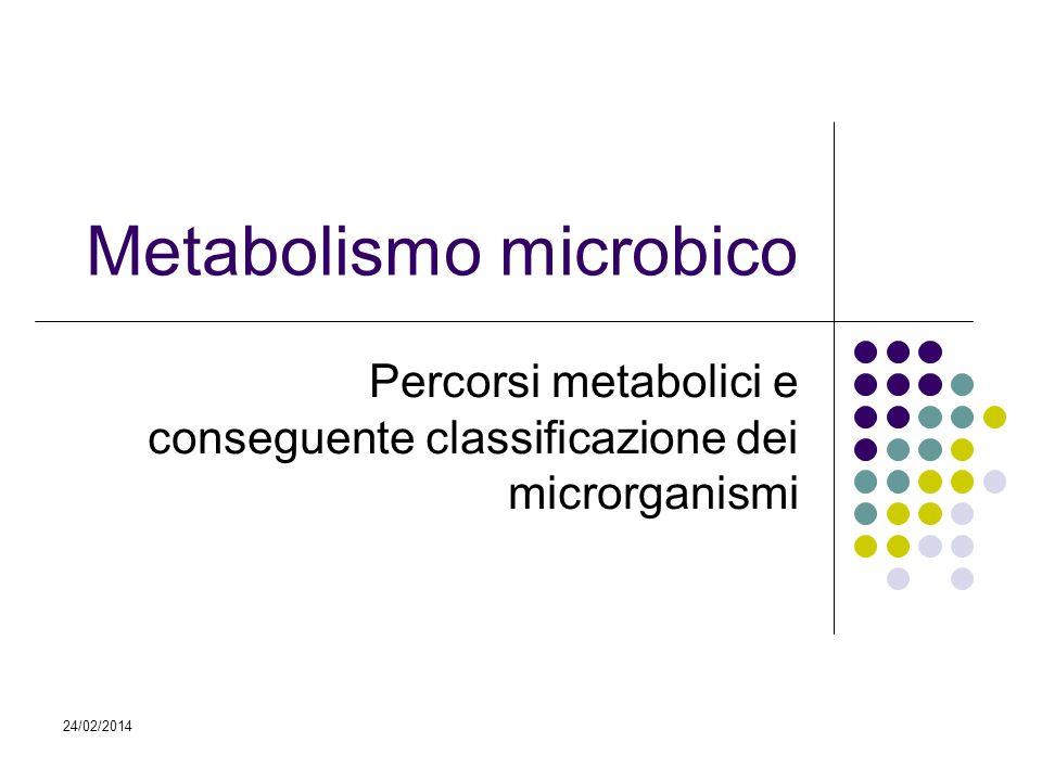24/02/2014 Metabolismo microbico Percorsi metabolici e conseguente classificazione dei microrganismi