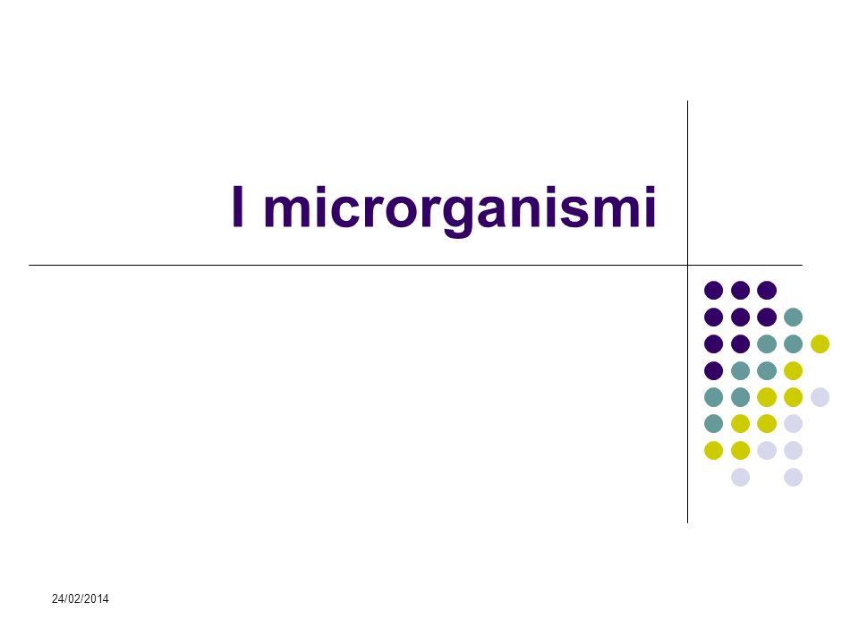 24/02/2014 I microrganismi