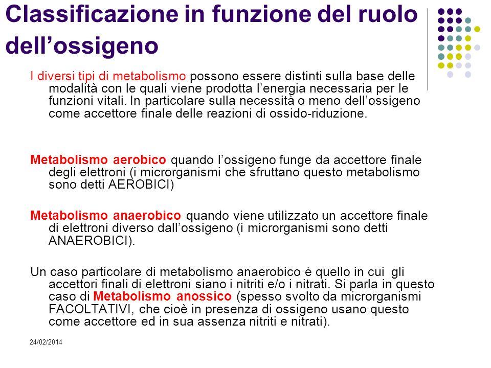 24/02/2014 Classificazione in funzione del ruolo dellossigeno I diversi tipi di metabolismo possono essere distinti sulla base delle modalità con le q