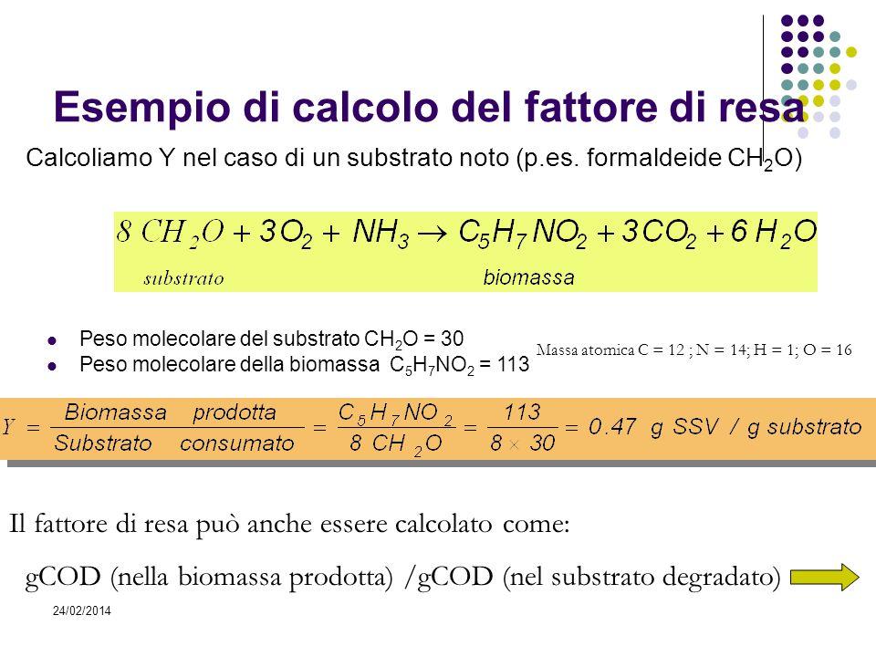 24/02/2014 Esempio di calcolo del fattore di resa Calcoliamo Y nel caso di un substrato noto (p.es. formaldeide CH 2 O) Peso molecolare del substrato