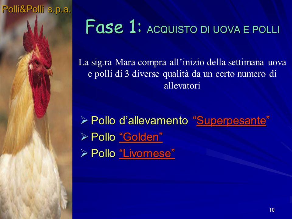 10 Fase 1: ACQUISTO DI UOVA E POLLI Pollo dallevamento Superpesante Pollo dallevamento Superpesante Pollo Golden Pollo Golden Pollo Livornese Pollo Li