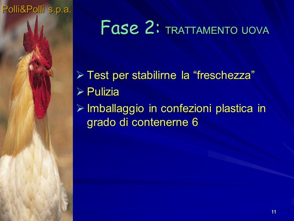 11 Fase 2: TRATTAMENTO UOVA Test per stabilirne la freschezza Test per stabilirne la freschezza Pulizia Pulizia Imballaggio in confezioni plastica in