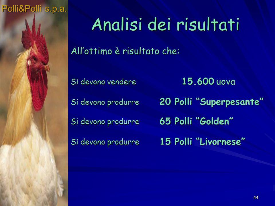 44 Analisi dei risultati Polli&Polli s.p.a. Allottimo è risultato che: Si devono vendere 15.600 uova Si devono produrre 20 Polli Superpesante Si devon