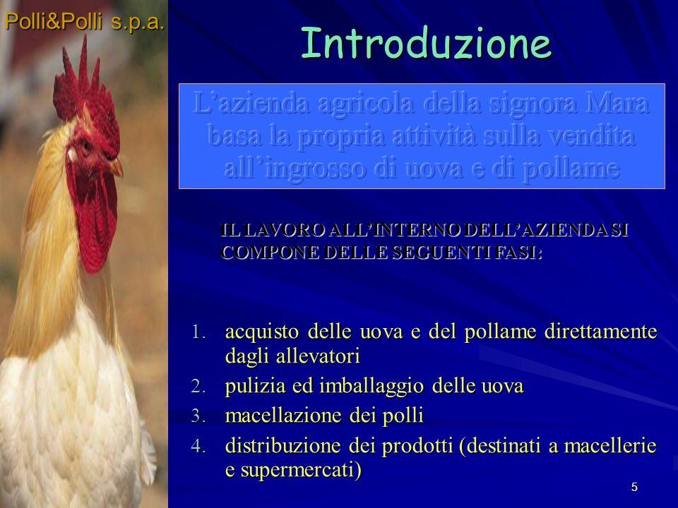5 IL LAVORO ALLINTERNO DELLAZIENDA SI COMPONE DELLE SEGUENTI FASI: Introduzione 1. acquisto delle uova e del pollame direttamente dagli allevatori 2.