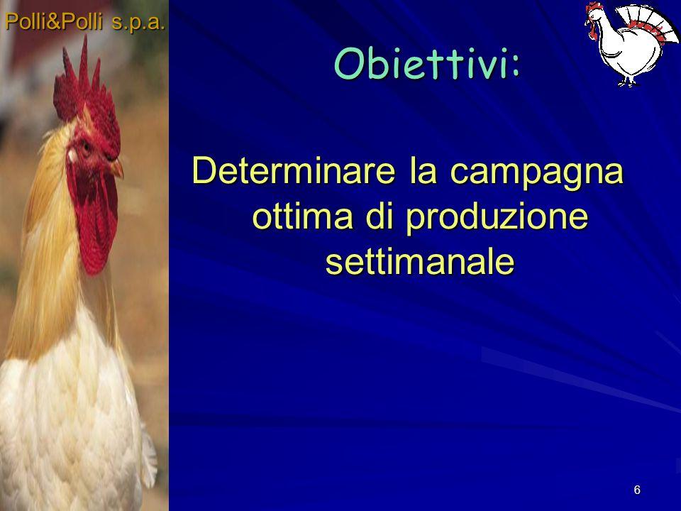 6 Obiettivi: Determinare la campagna ottima di produzione settimanale Polli&Polli s.p.a.