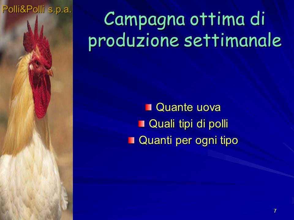 7 Campagna ottima di produzione settimanale Quante uova Quali tipi di polli Quanti per ogni tipo Polli&Polli s.p.a.
