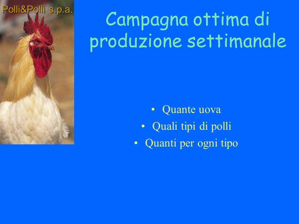 Obiettivi: Determinare la campagna ottima di produzione settimanale Polli&Polli s.p.a.
