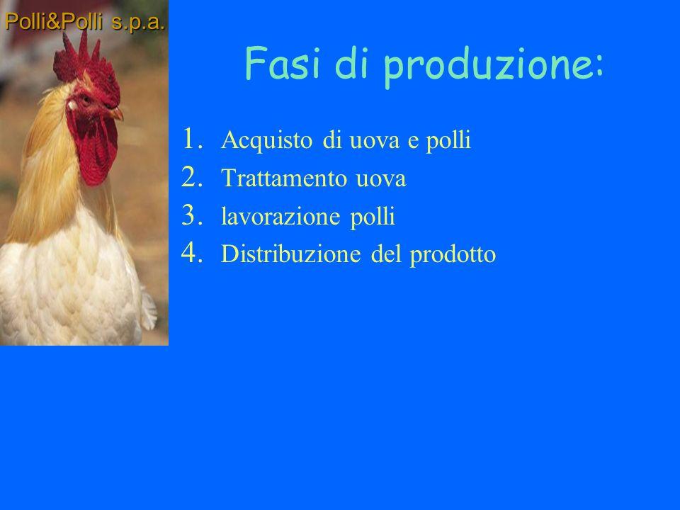 Tenendo presente : Le richieste del mercato La disponibilità degli allevatori Le ore di lavoro Profitti ottenibili dalla vendita di ogni prodotto Polli&Polli s.p.a.