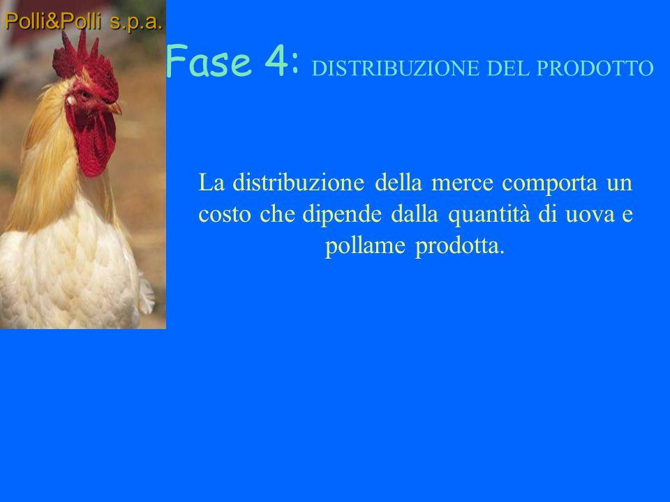 Macellazione non più di 2 giorni prima della distribuzione Costi di mantenimento (mangime + veterinario) Conservazione in frigoriferi Fase 3: lavorazione polli Polli&Polli s.p.a.