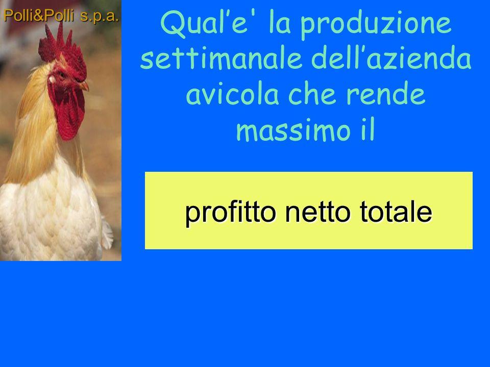 Definizione dei costi Polli&Polli s.p.a.