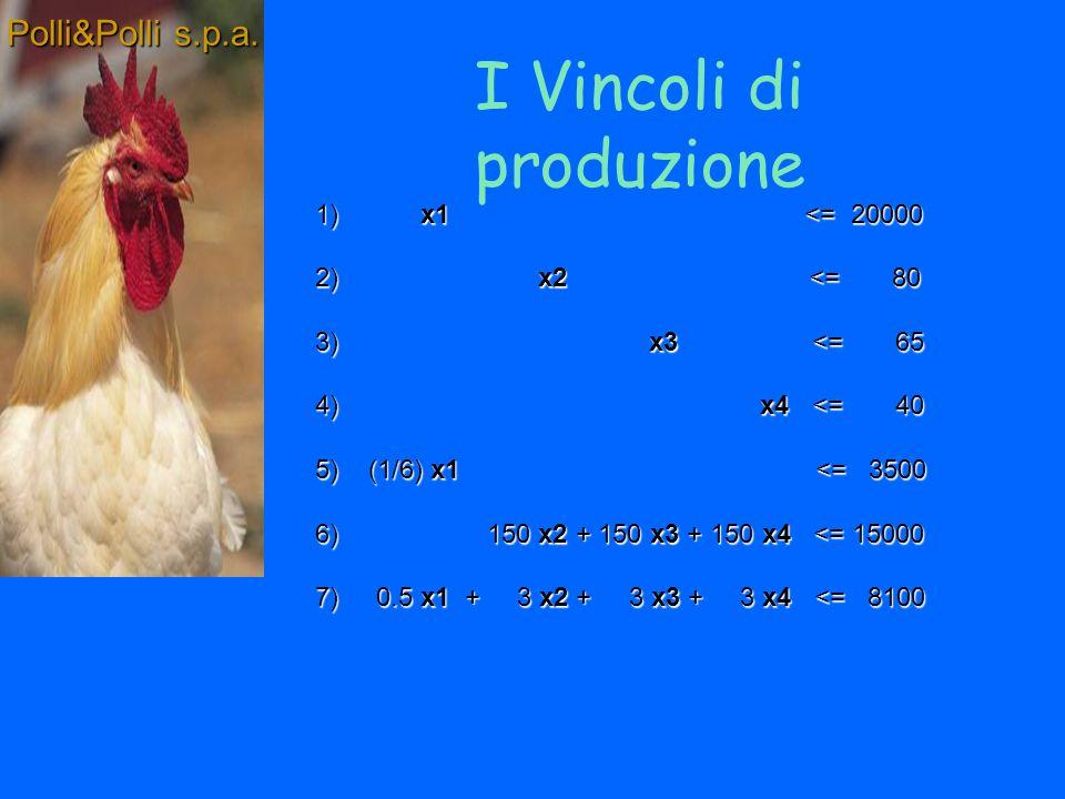 Definizione dei vincoli Polli&Polli s.p.a.