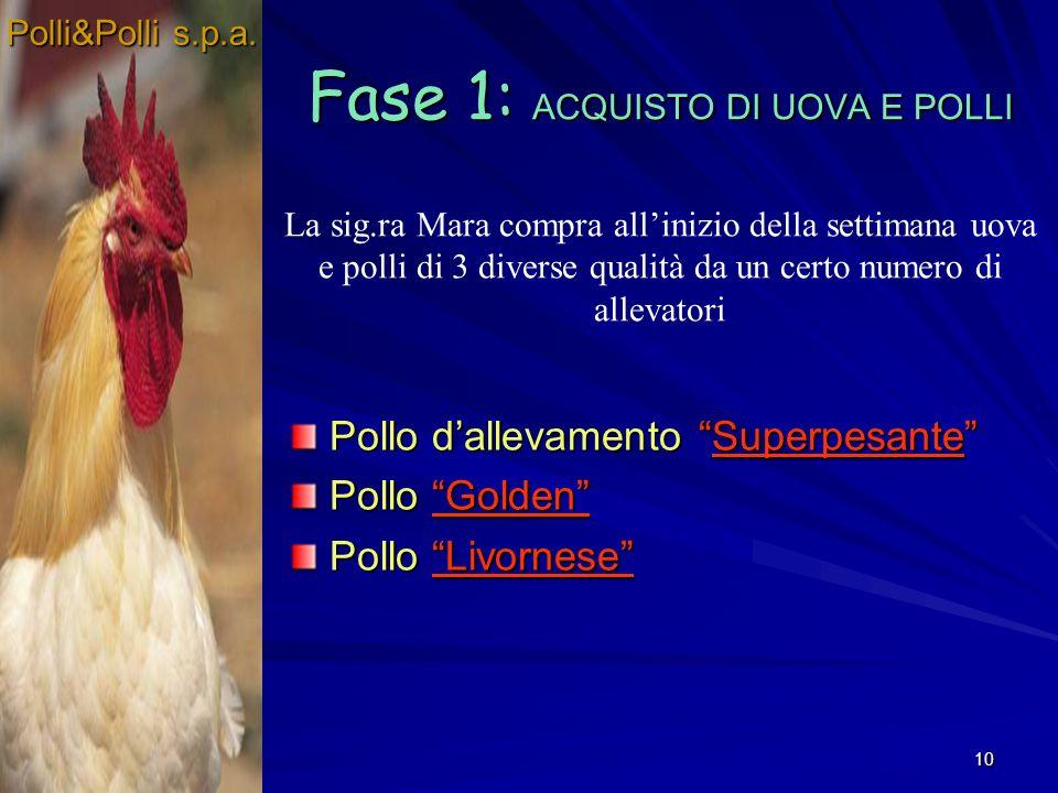 10 Fase 1: ACQUISTO DI UOVA E POLLI Pollo dallevamento Superpesante Pollo Golden Pollo Livornese La sig.ra Mara compra allinizio della settimana uova