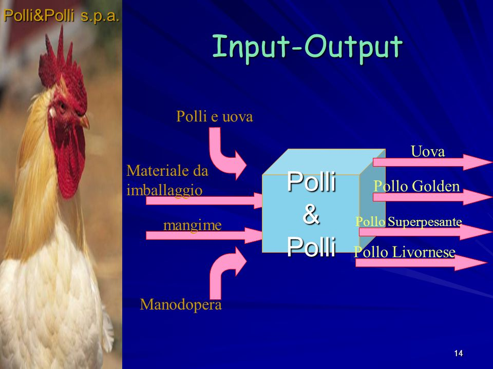 14 Input-Output Polli&Polli mangime Polli e uova Materiale da imballaggio Manodopera Polli&Polli s.p.a.