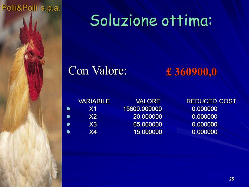25 Soluzione ottima: Polli&Polli s.p.a.