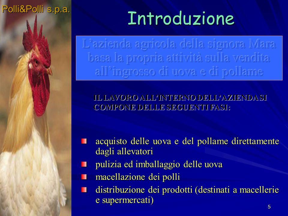 5 IL LAVORO ALLINTERNO DELLAZIENDA SI COMPONE DELLE SEGUENTI FASI: Introduzione acquisto delle uova e del pollame direttamente dagli allevatori pulizi