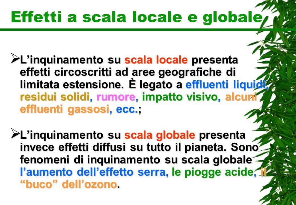 Effetti a scala locale e globale Linquinamento su scala locale presenta effetti circoscritti ad aree geografiche di limitata estensione. È legato a ef