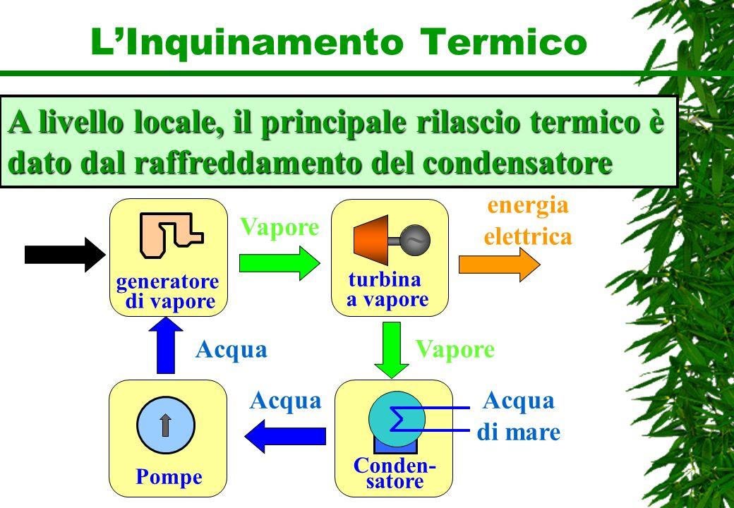 LInquinamento Termico A livello locale, il principale rilascio termico è dato dal raffreddamento del condensatore ~ turbina a vapore Vapore energia el