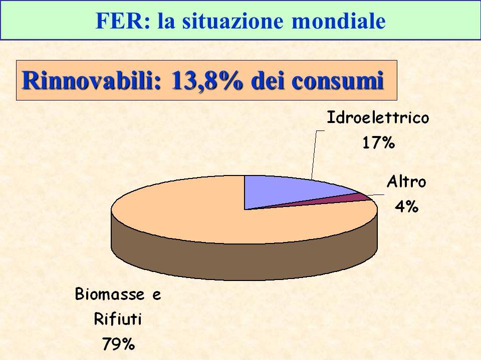 FER: la situazione mondiale Rinnovabili: 13,8% dei consumi