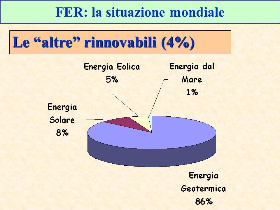 FER: la situazione mondiale Le altre rinnovabili (4%)