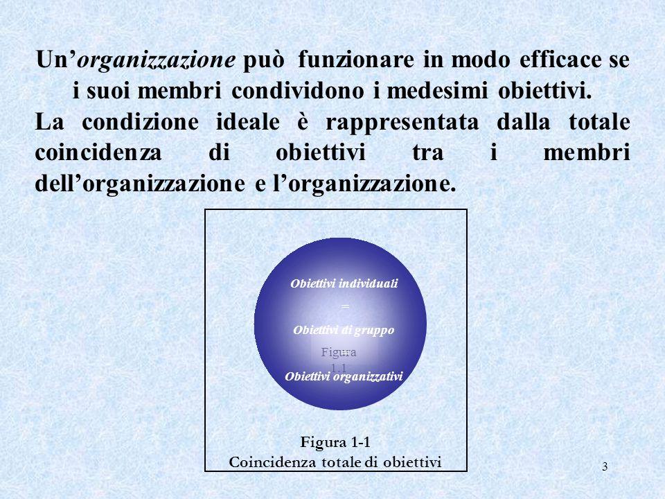 3 Figura 1.1 Unorganizzazione può funzionare in modo efficace se i suoi membri condividono i medesimi obiettivi. La condizione ideale è rappresentata
