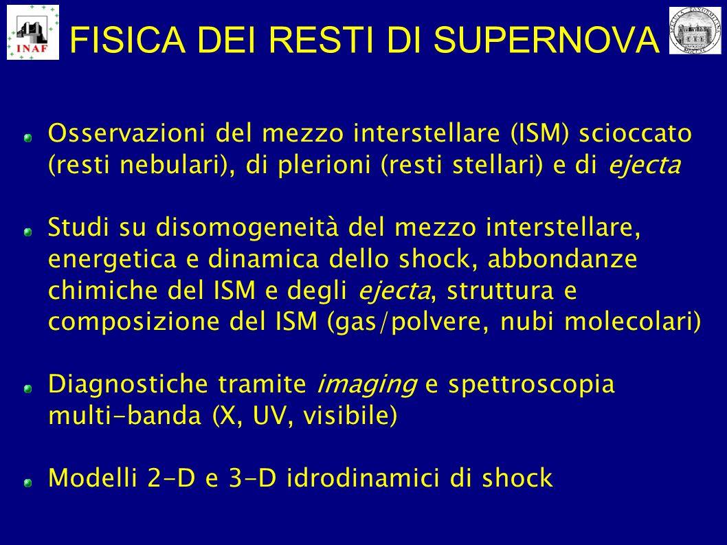 FISICA DEI RESTI DI SUPERNOVA Osservazioni del mezzo interstellare (ISM) scioccato (resti nebulari), di plerioni (resti stellari) e di ejecta Studi su